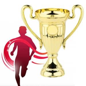 Trofeus personalizados
